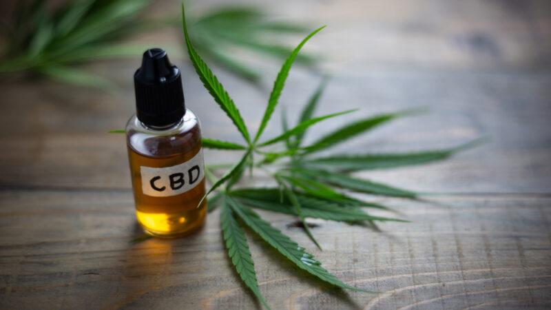 Ce qu'il faut savoir au sujet du cannabidiol ou CBD
